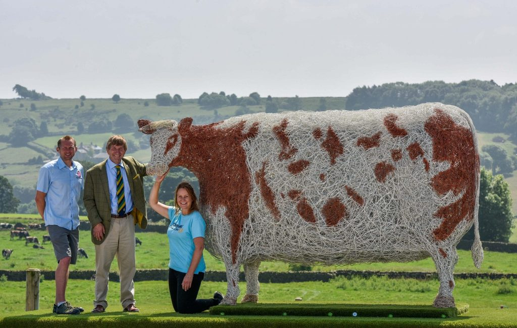 #GYSHeifer at Our Cow Molly Farm Show for Yorkshire Show
