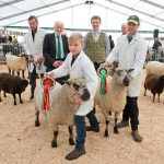 Sheep Exhibitors at Countryside Live 2017