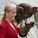 2014 HRH Countess of Wessex with a bird of prey at the Great Yorkshire Show