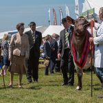 GYS18 HRH The Princess Royal visits the 160th Great Yorkshire Show