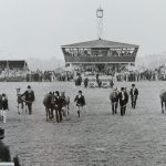 Equine classes at the Great Yorkshire Show in 1977