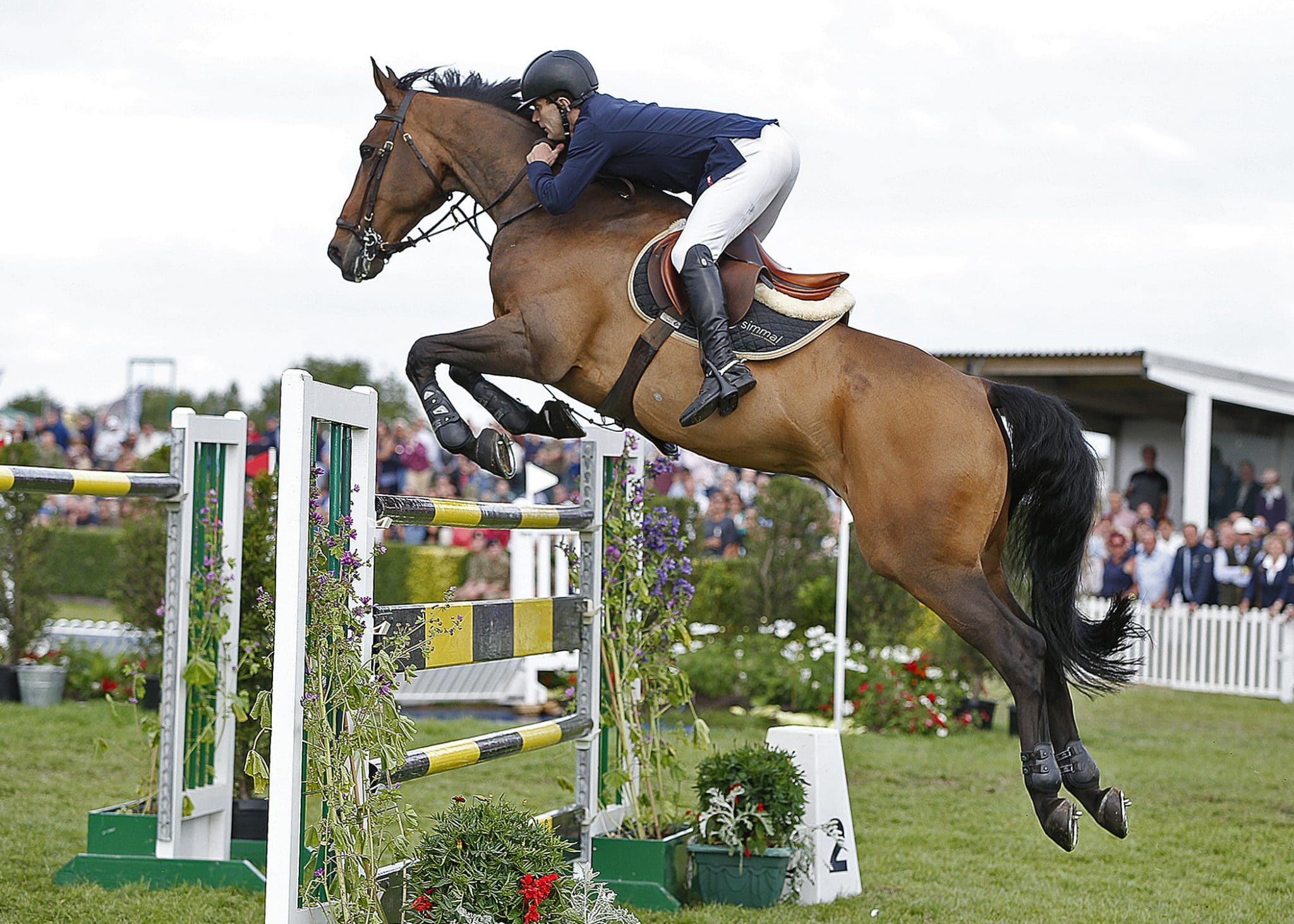 Showjumping at Great Yorkshire Show