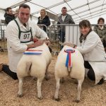 Supreme Champion Pair of Butchers' Lambs at Countryside Live 2019