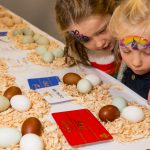 Inspecting the eggs at Countryside Live 2019