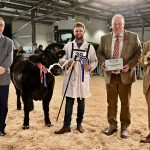 Reserve Supreme Beef Champion at Countryside Live 2019
